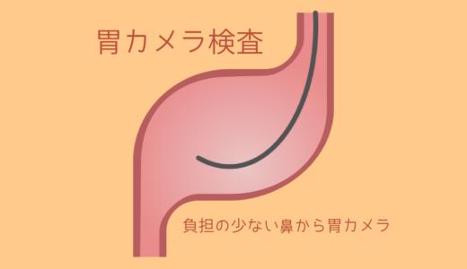2017年の胃カメラの実績