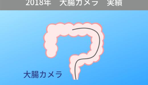 2018年の大腸カメラの実績