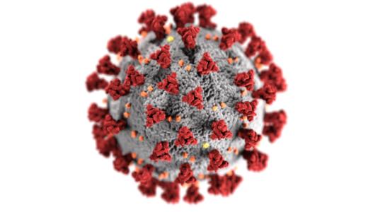 新型コロナウィルスの抗体検査実施中